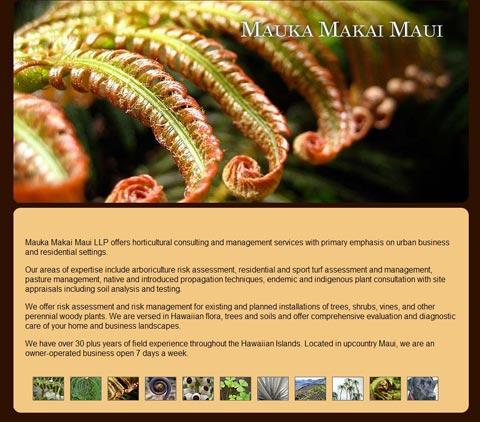 Mauka Makai Maui